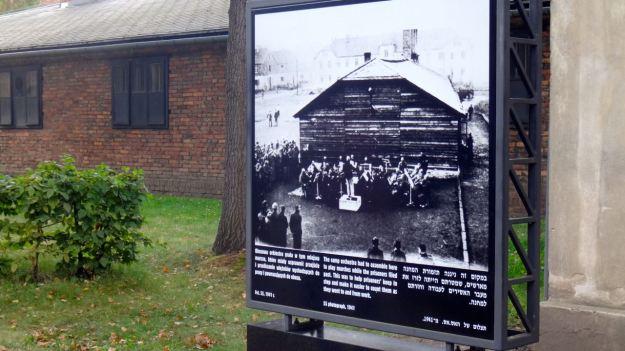 Auschwitz_03