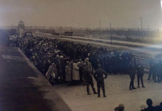 Auschwitz_12