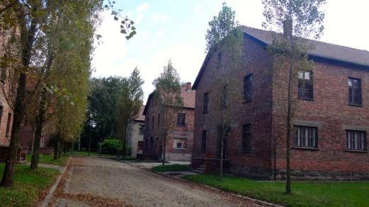 Auschwitz_20
