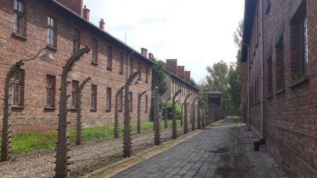 Auschwitz_39