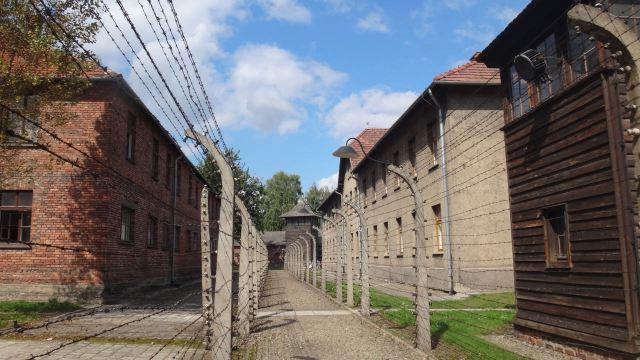 Auschwitz_40