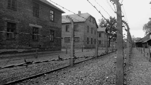 Auschwitz_44