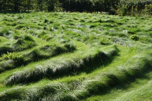 Maybe I'm a maze?