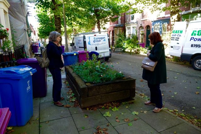 We look at the planting in Cairns Street.
