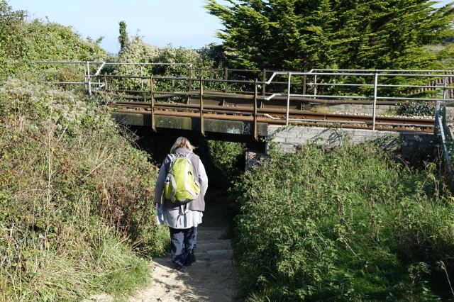 The path takes us under the coastal railway.