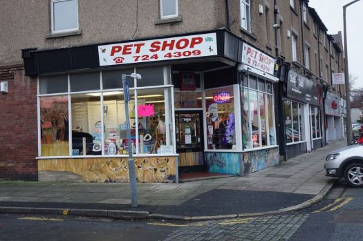 A pet shop that definitely doesn't sell elephants, lions or rhinos.