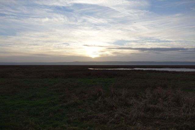 Then our day ends at Parkgate.