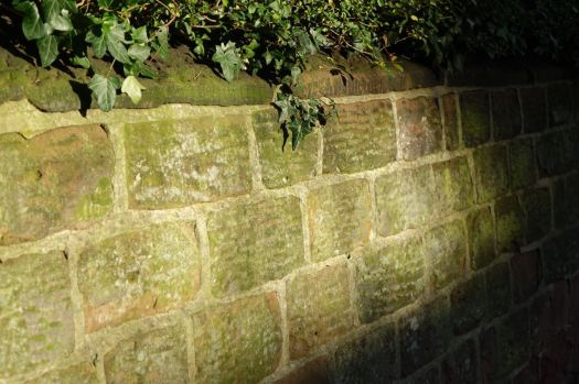 In the sandstone walled lane.