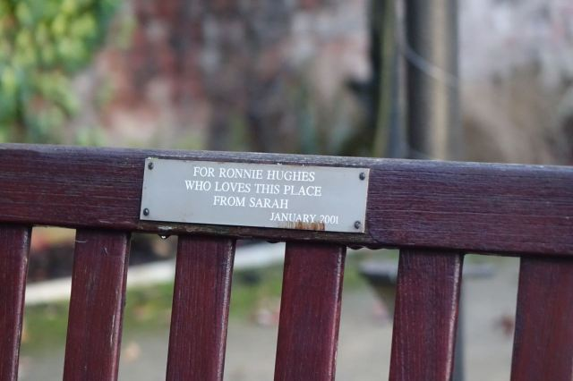 My bench, bought as a birthday present sixteen years ago by Sarah.