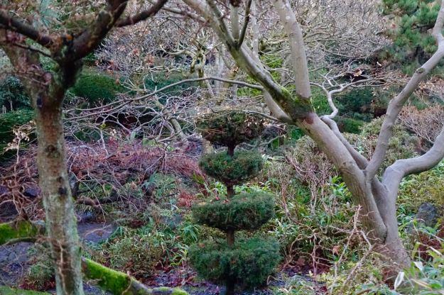 Back through the English Garden to the Japanese Garden.