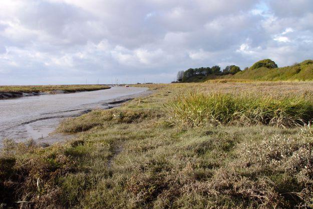12-11-the-marshlands-21