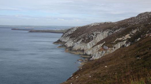 Anglesey May_32