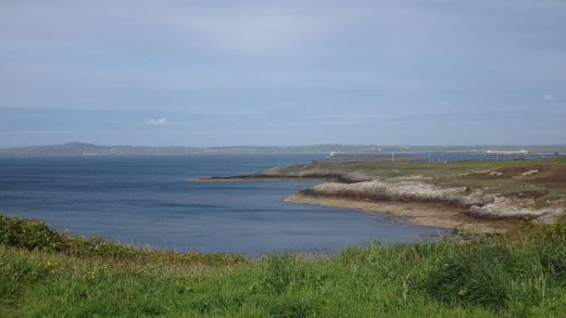 Anglesey May_35