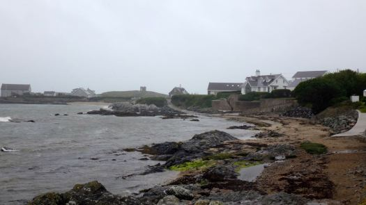 Anglesey May_57